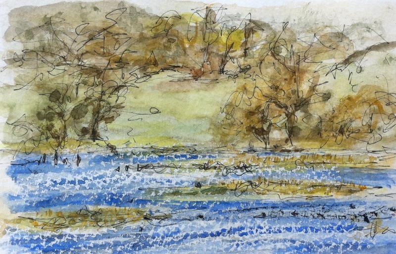 salt marshes on River Hamble